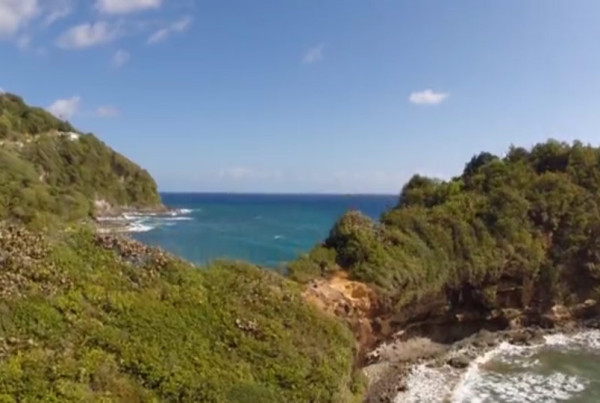 nature-island-challenge